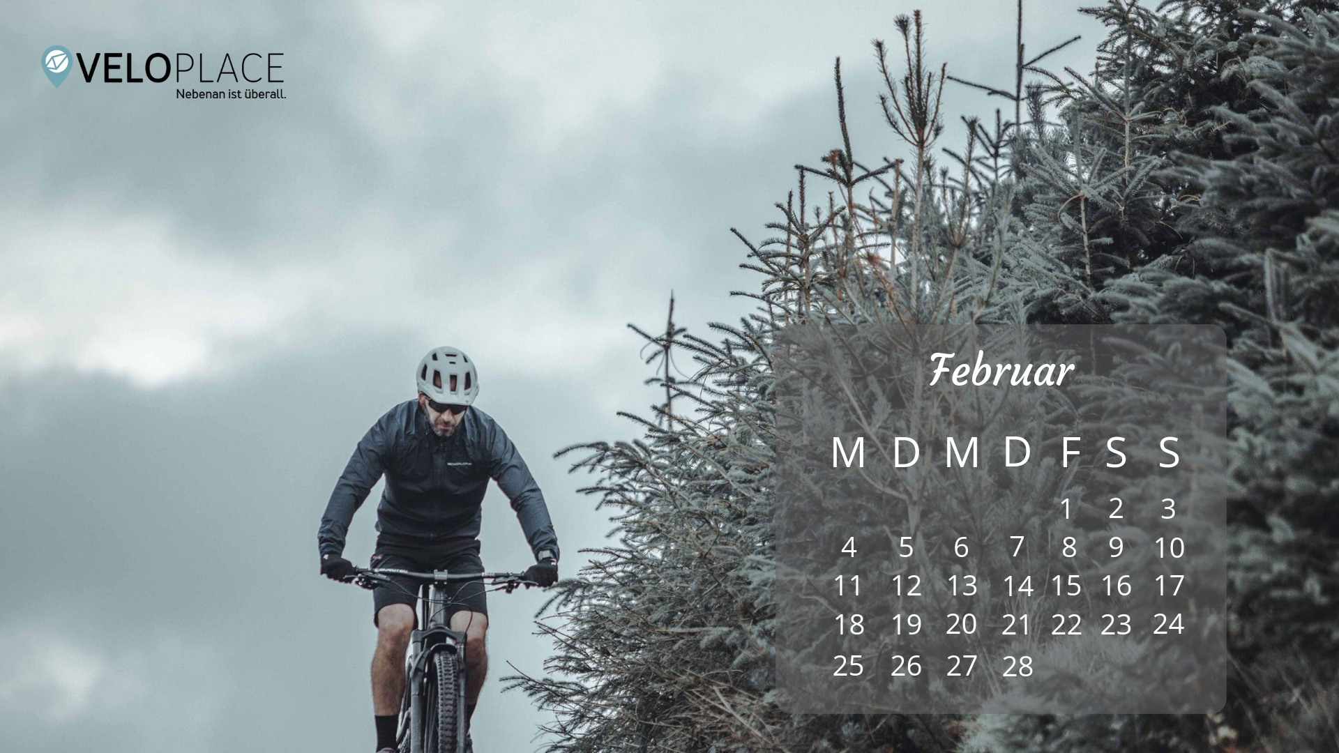 Veloplace Wallpaper Februar 2019